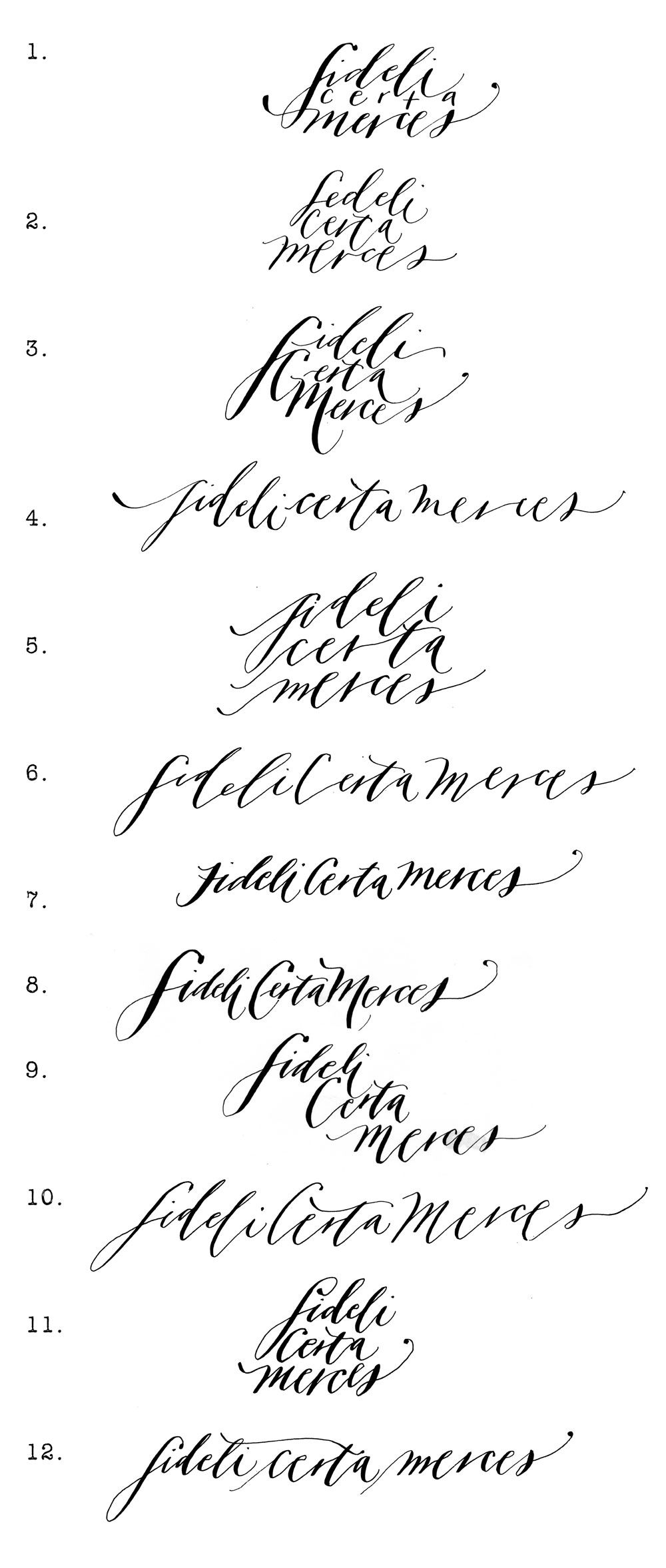 Script Styles By Mara Neither Snow Fideli Certa Merces Meaning To The Faithful Reward Is Certain