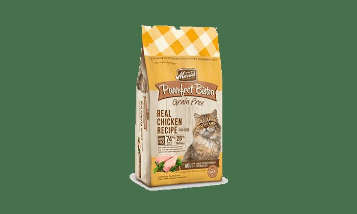 7 Best Cat Food Brands For 2019 Cat Food Brands Best Cat Food