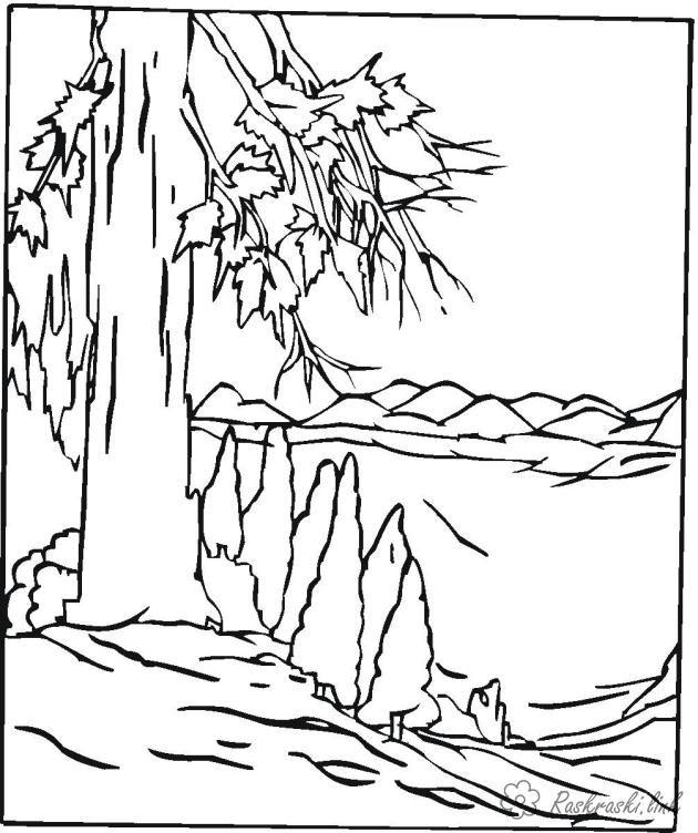 Раскраски Лес и пейзажи раскраска лес,склон,большое дерево ...