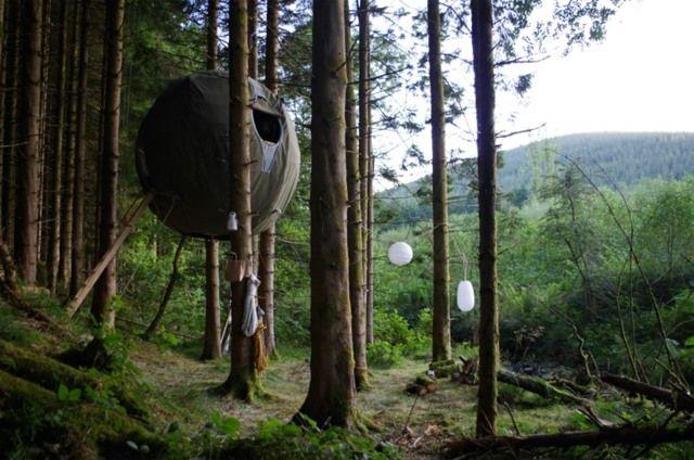 Baumhaus Zelt Mehrere Bäume Leben Mitten Natur | Tactical ... Wendeltreppe Um Einen Baum Baumahus