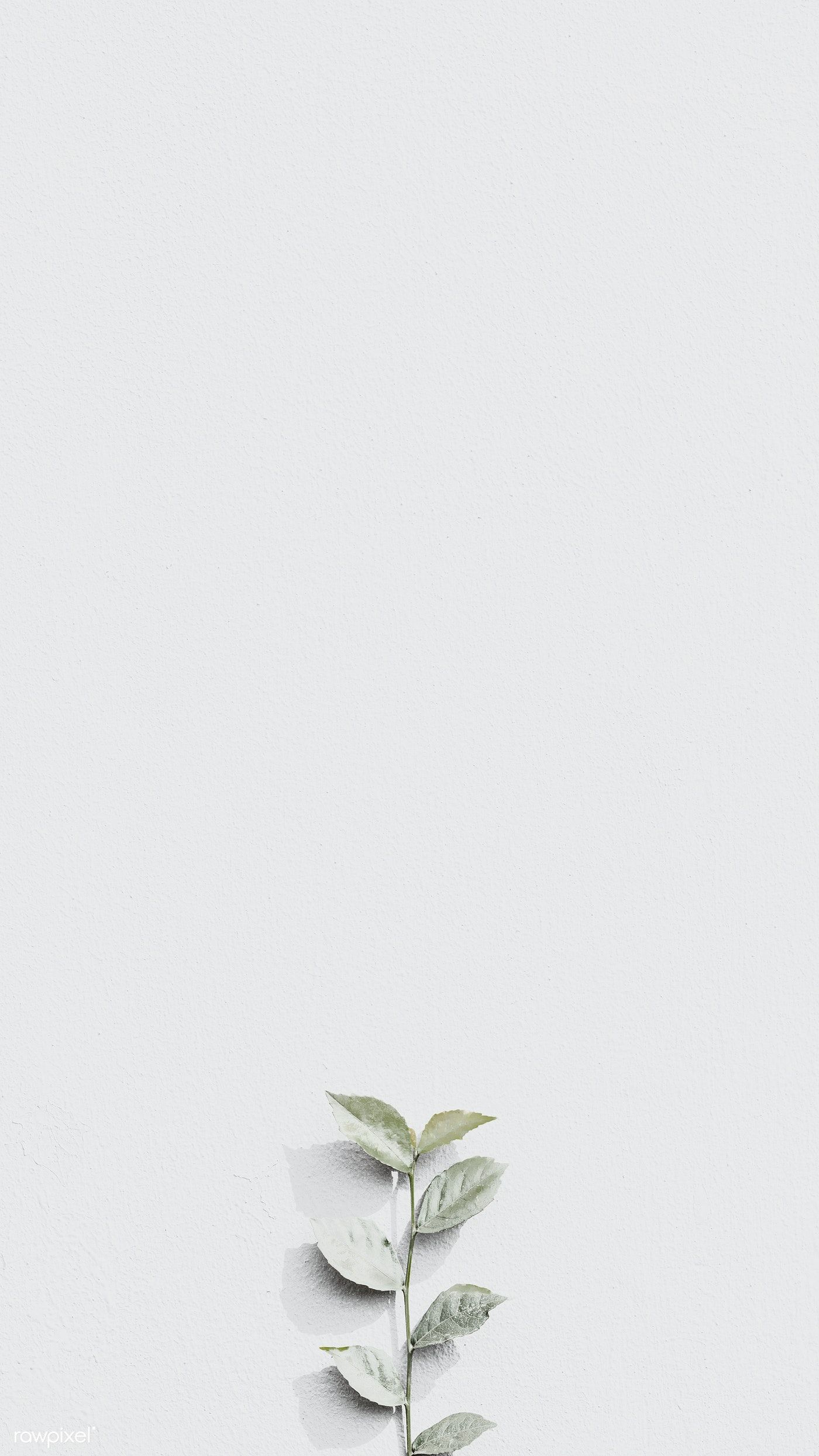 Download Premium Image Of White Plant Branch On A Gray Brick Wall In White Wallpaper For Iphone Pastel Background Wallpapers White Background Wallpaper