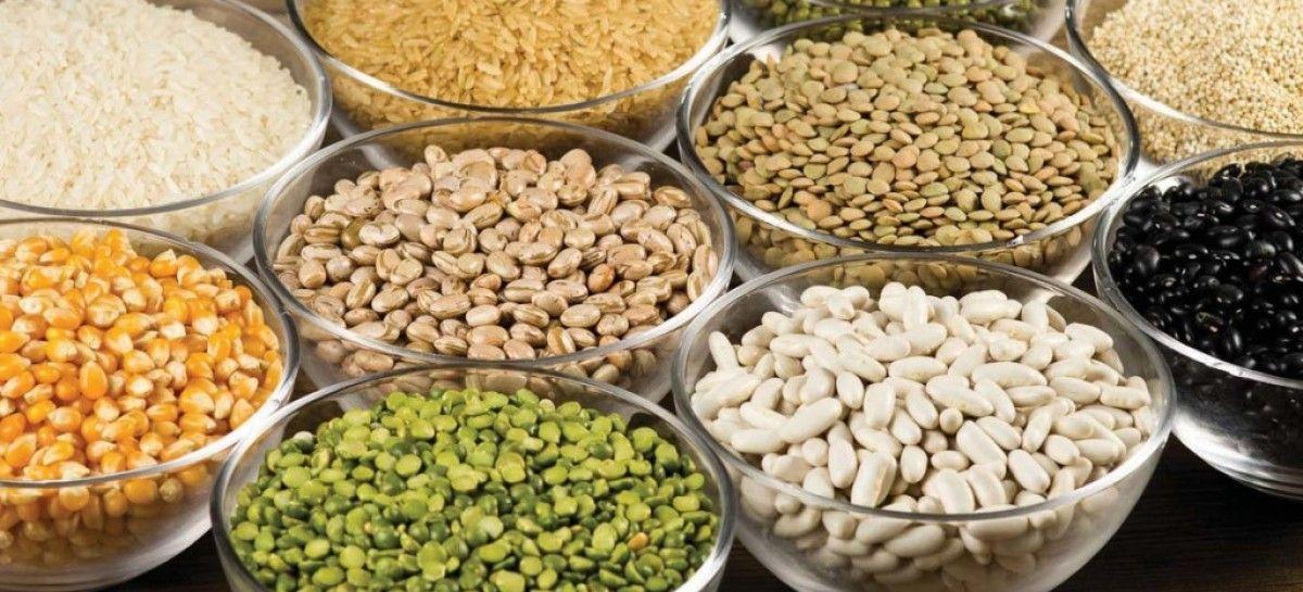 Vegnutri: Por que deixar grãos e sementes de molho antes de consumi-los?