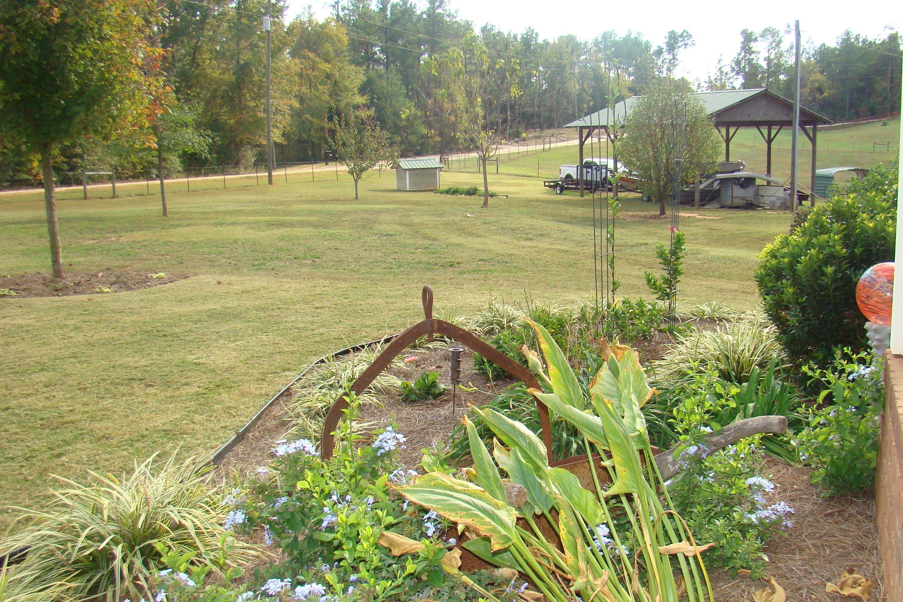 My sister's beautiful front yard (photo by PCDye) in Elbert County.