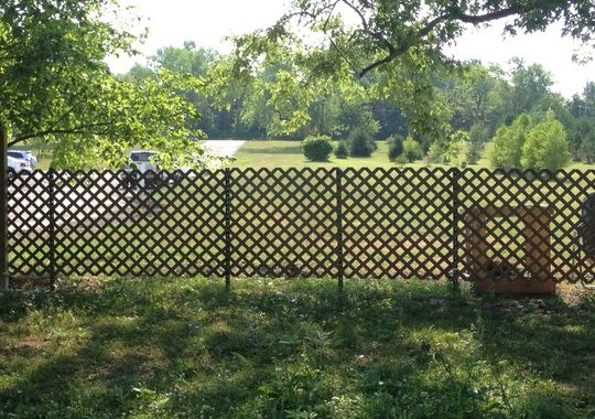 Here Is A View Of The Lattice Fence That Has No Plants On It You Could Add Another Lattice Panel On The Bac Lattice Fence Backyard Fences Lattice Fence Panels
