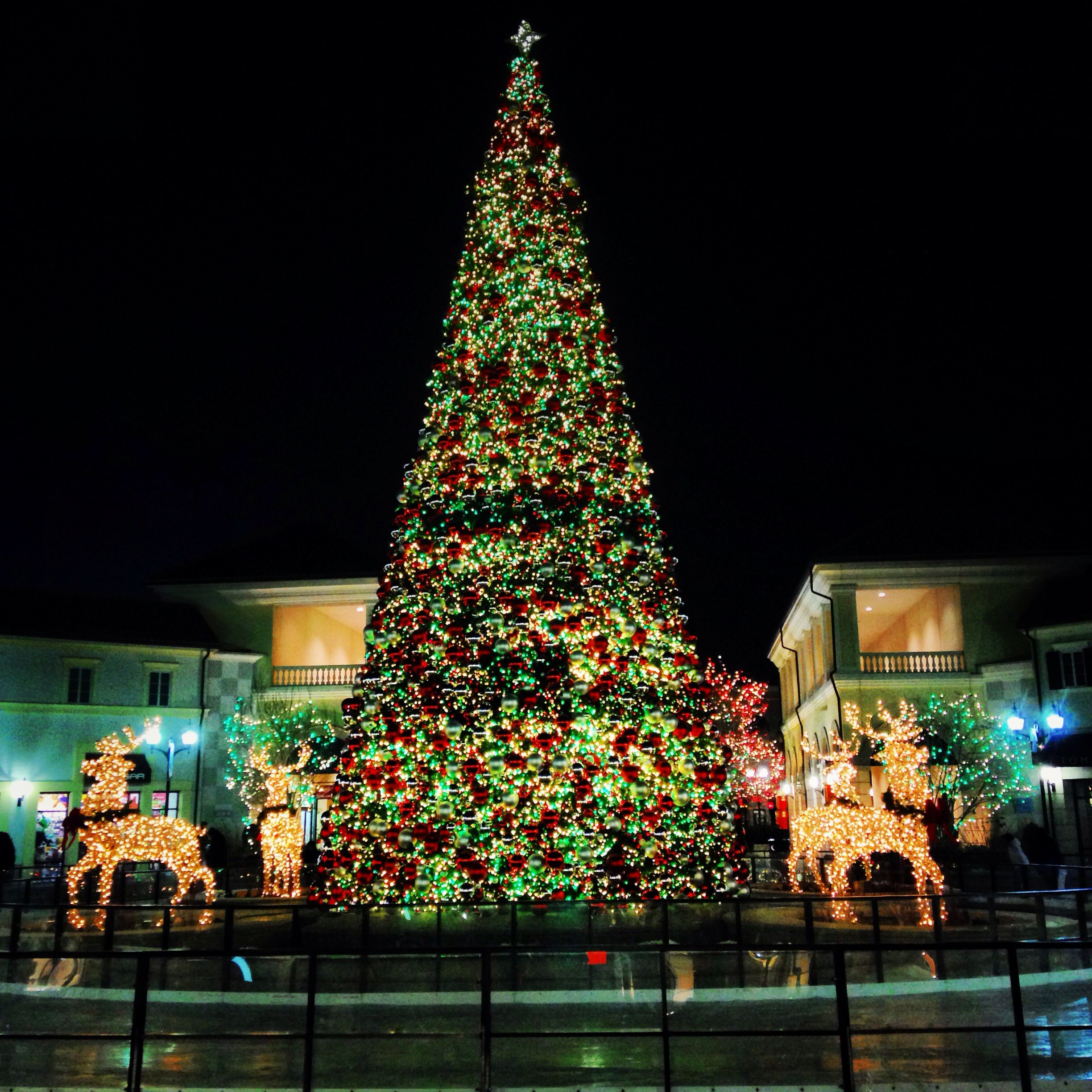 Lights, Music, Ice skating & Snow makes shopping fun at Tanger Outlets,  Deer. Long Island NyIsland LifeLight MusicIce SkatingDeerOutletsChristmas  Trees