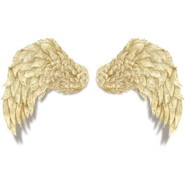 Angel Wings Liked On Polyvore Featuring Wings Angels Angel Wings And Filler With Images Wings Angel Polyvore Set