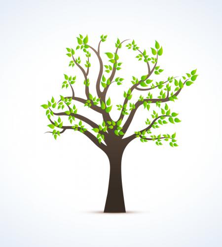 تصميم رسم شجرة مع اوراق خضراء ملف مفتوح Tree Drawing Tree Illustration Nature Vector