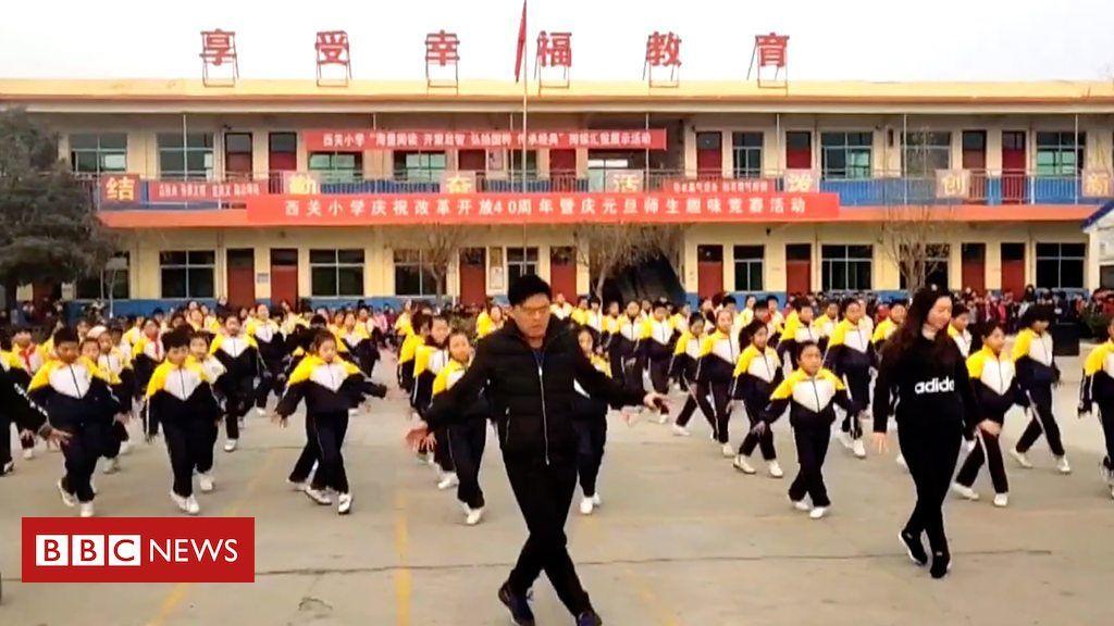 Chinese students' viral 'shuffle' dance Student, Job