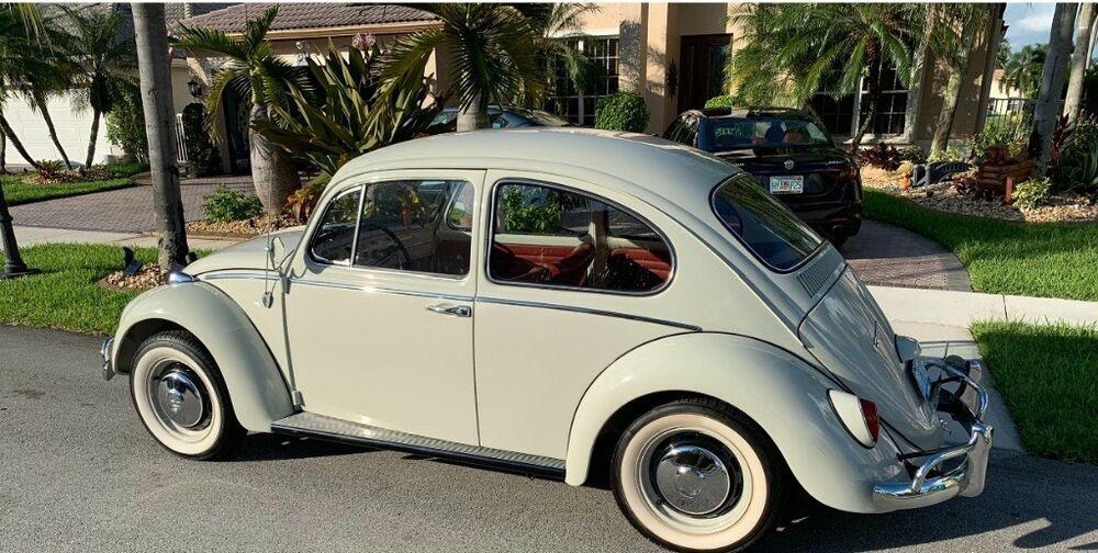 Similar Offers 1966 Volkswagen Beetle Classic 2 Door Sedan Classic Volkswagen Beetle Vw Beetle Classic Classic Volkswagen