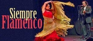 Annual Festival de Cante : Flamenco 2014 #miamirealestate #miamievents