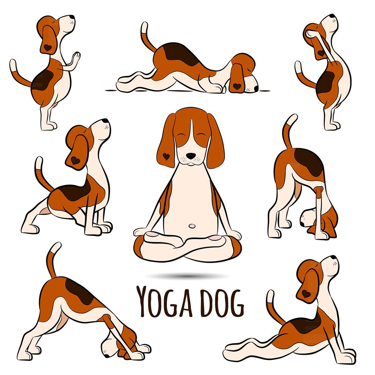 Yoga Dog on Behance | Dog yoga