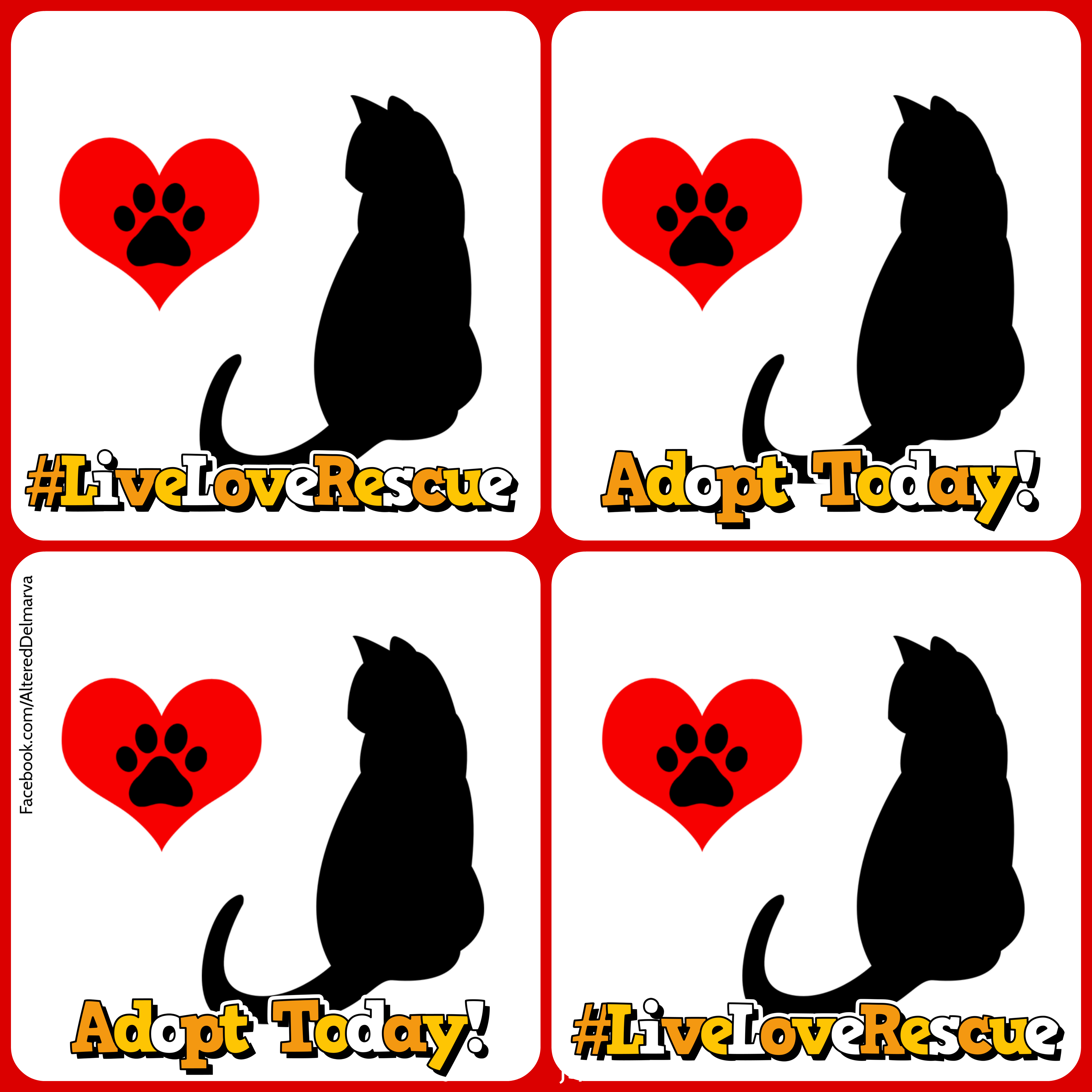 Live Love Rescue Adopt Today Sitting Black Cat With Heart Image