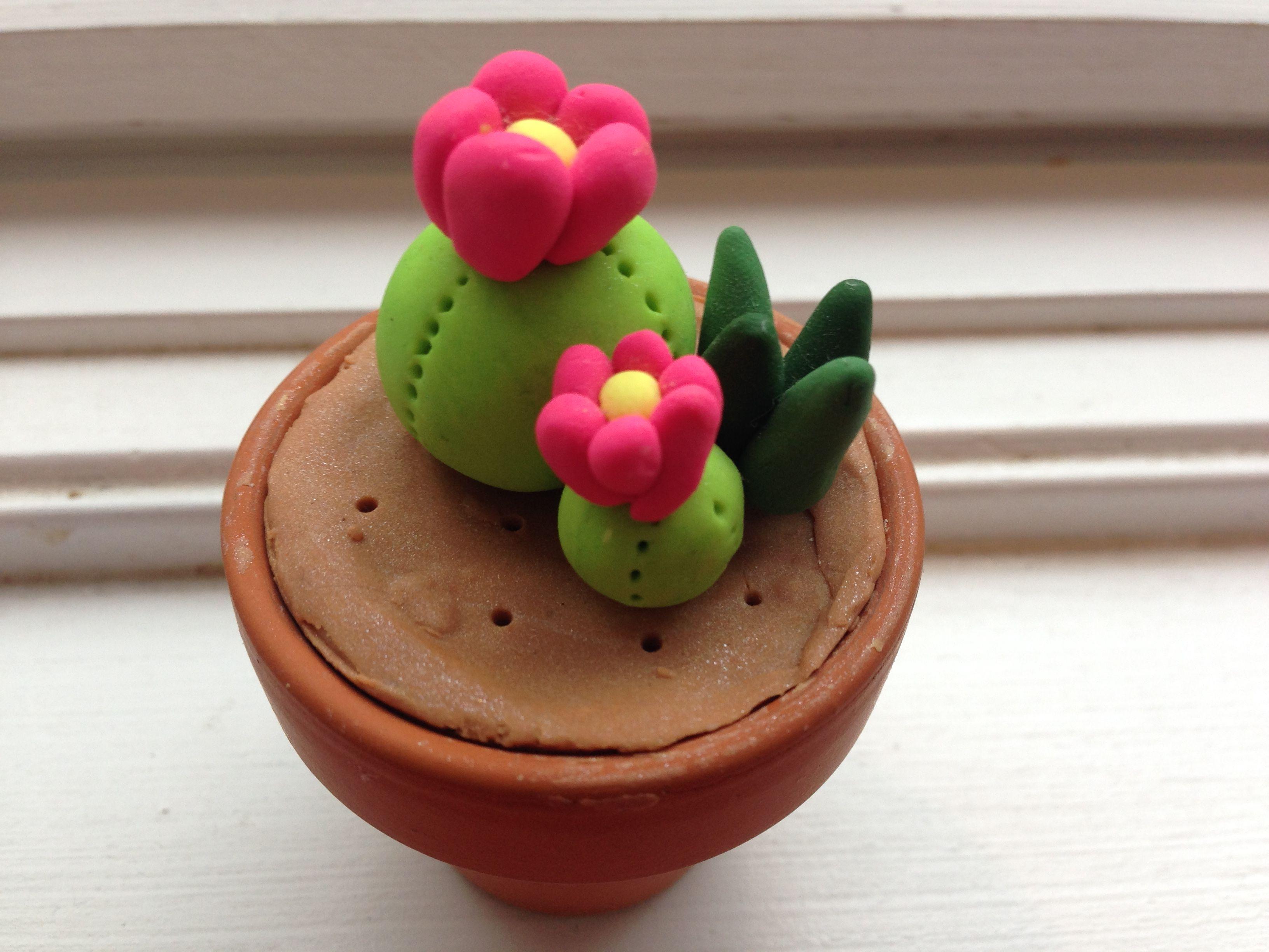 Maceta cactus flor porcelana fr a pinterest - Macetas de porcelana ...