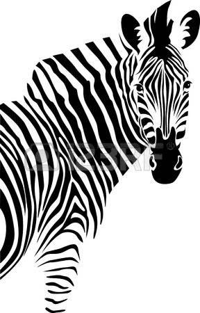 Resultado De Imagen De Como Dibujar Una Cebra Facil Zebra Art Zebra Illustration Zebra Drawing