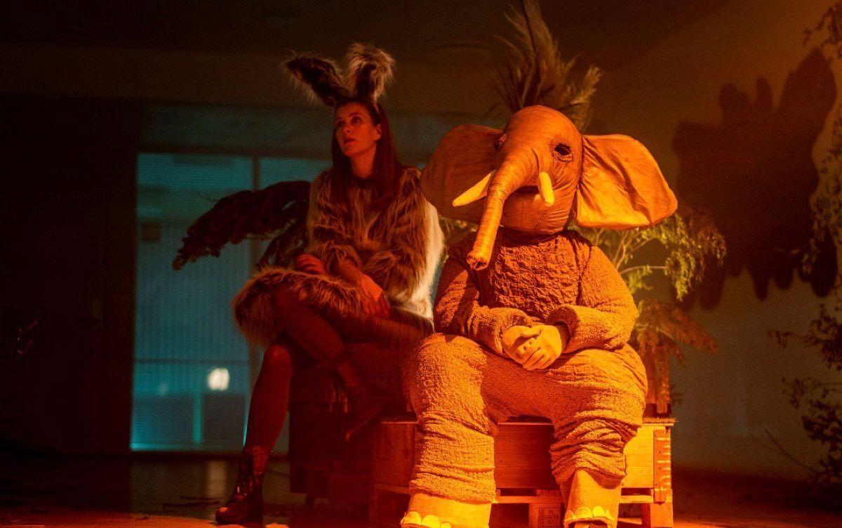 30 Películas De Terror Extremo Que Sólo Los Verdaderos Cinéfilos Conocen Peliculas Buenas En Netflix Mejores Peliculas De Netflix Peliculas De Terror Extremo