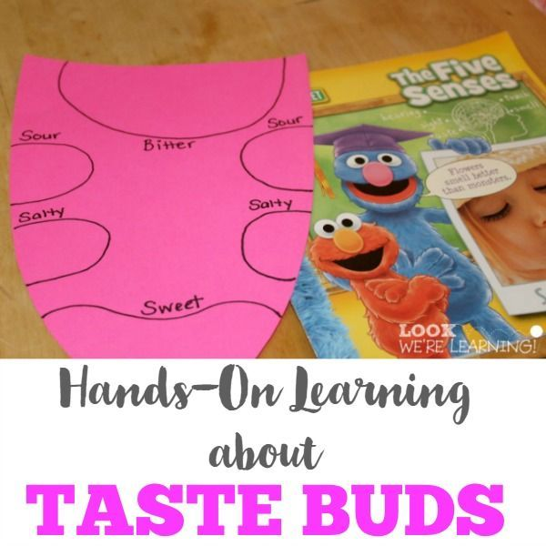 Hands On Learning About Taste Buds Taste Buds Homeschool And