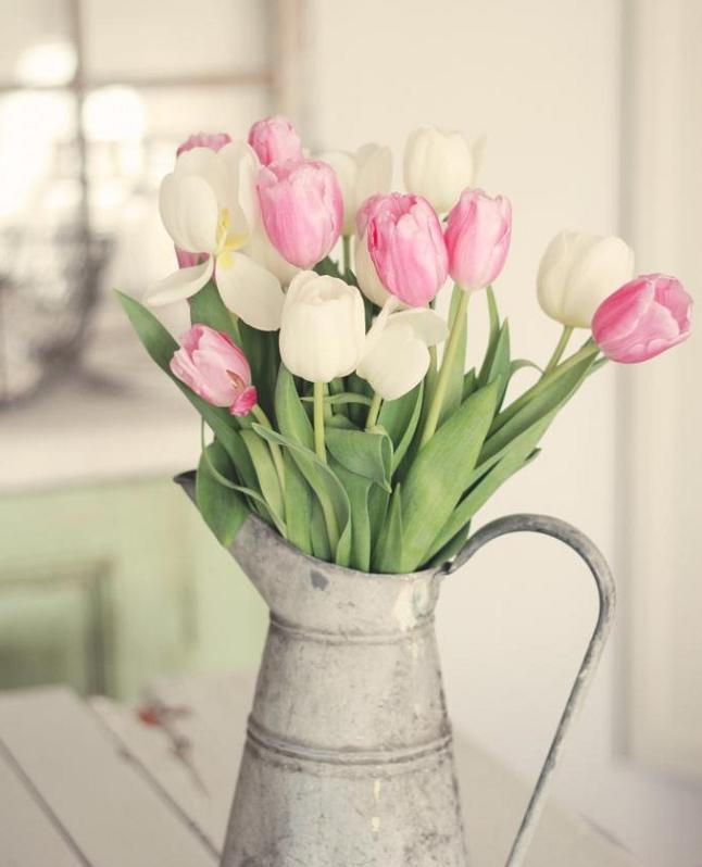 cinco flores para decorar tu casa en primavera | flores / flowers