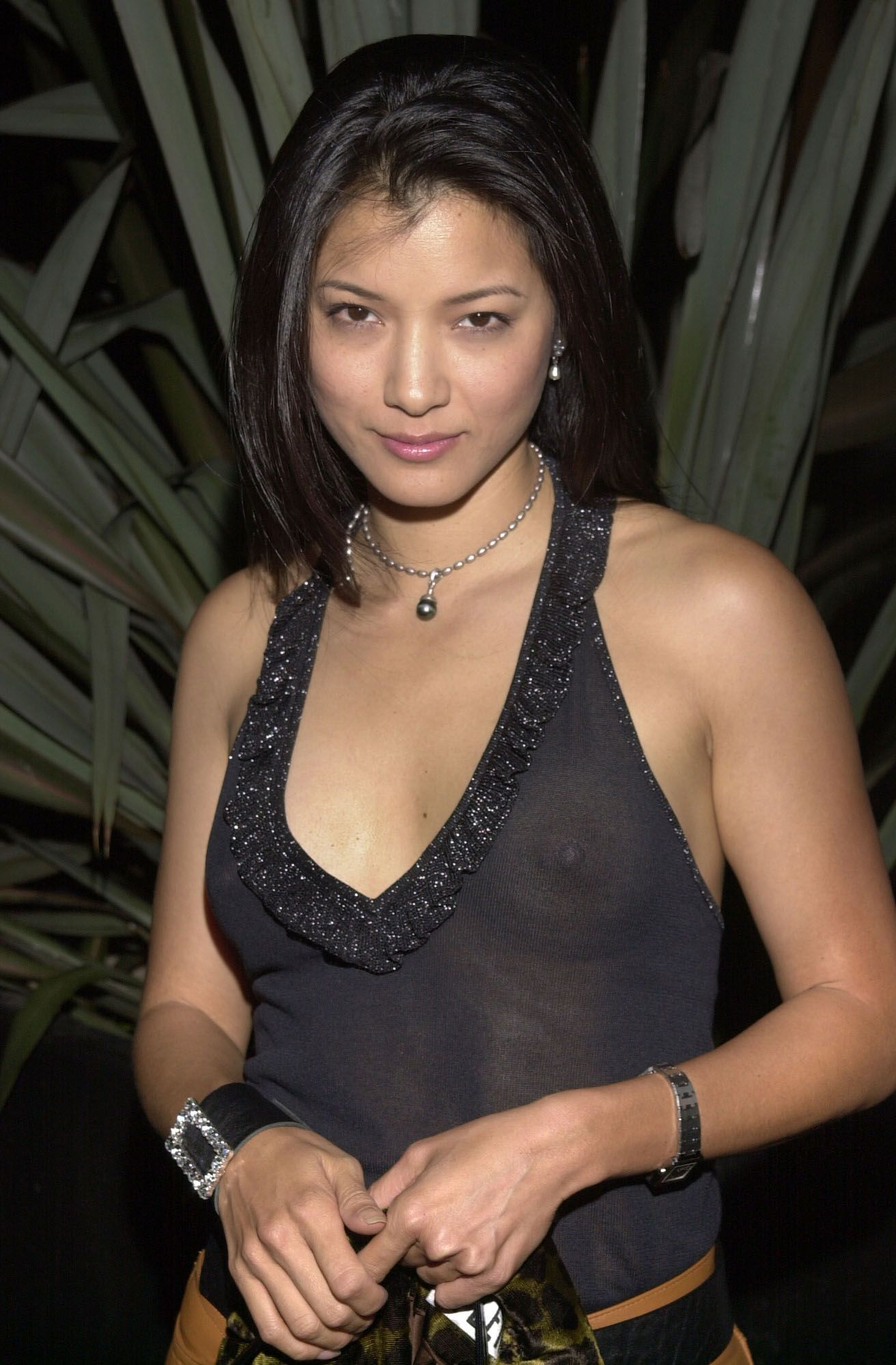 Pictures Kelly Hu nudes (22 photo), Fappening