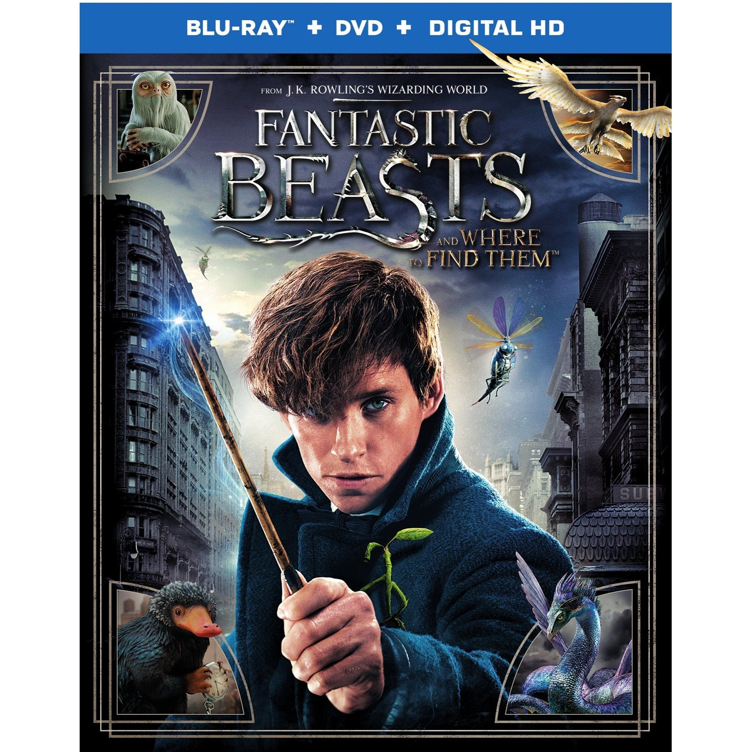 Harry Potter Fantastic Beasts And Where To Find Them Fantastic