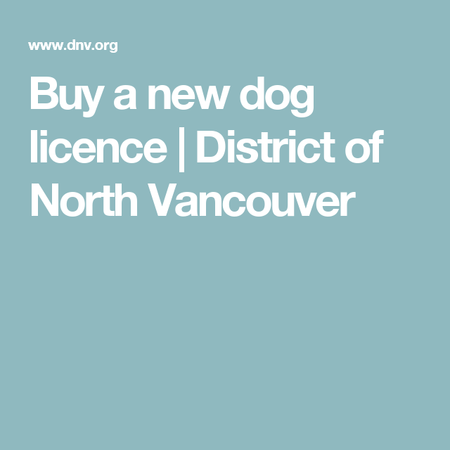 Buy a new dog licence | District of North Vancouver