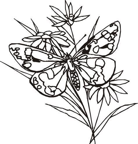 Resultado de imagen de Line Drawings of Flowers and