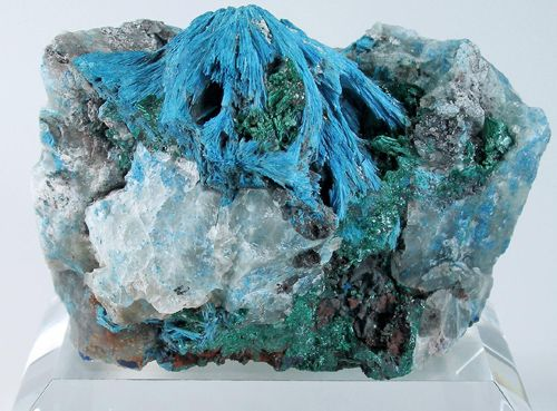 Shattuckite: The blue mineral shattuckite information and pictures