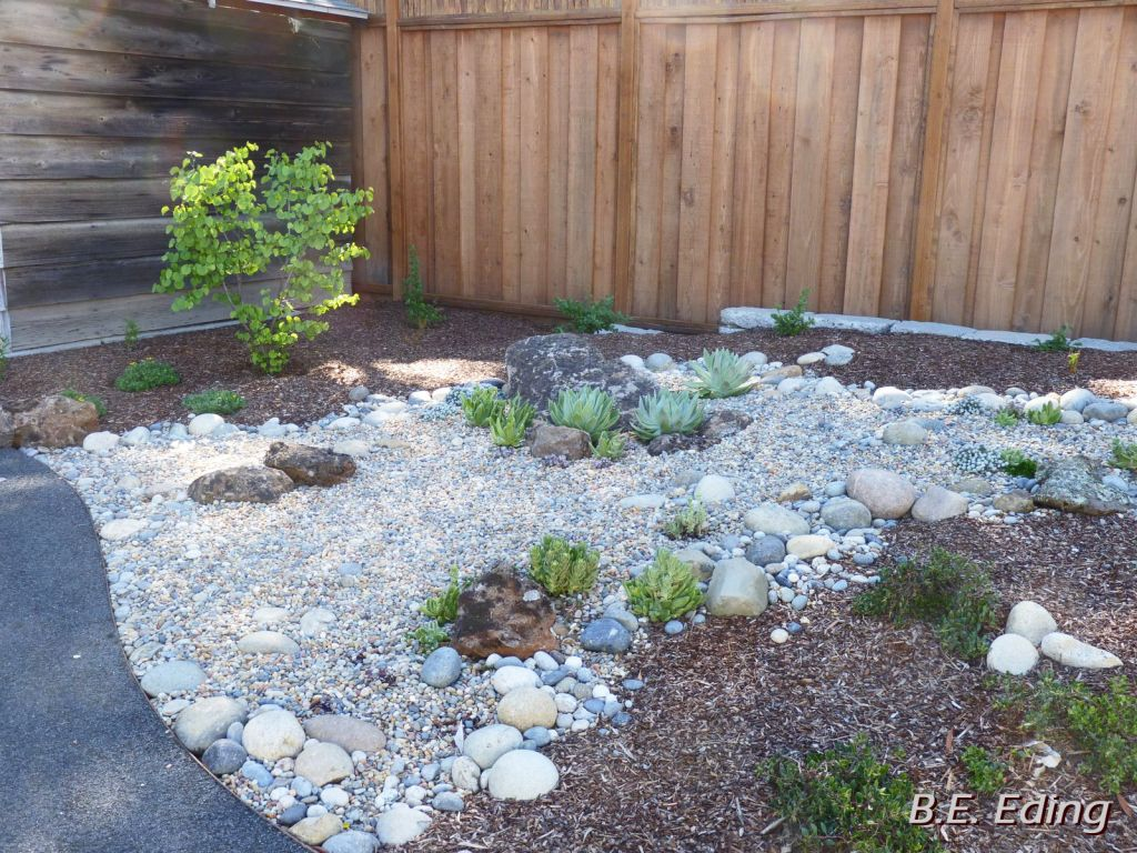 Succulent Garden With Artistic Bed Of River Rock Patios Lindo