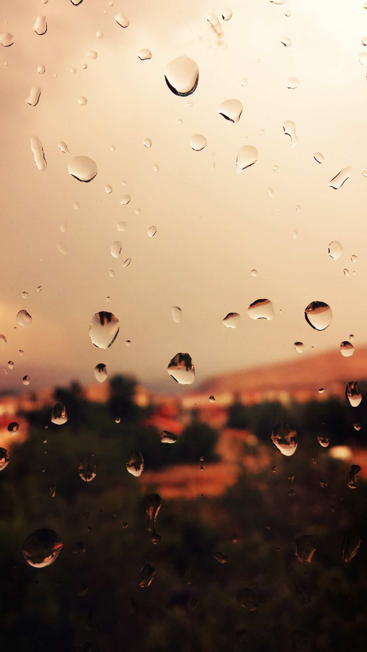 Raindrops on Glass Wallpaper (With images) Iphone 6s