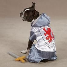 Medieval Knight Dog Halloween Costume Dog Halloween Costumes