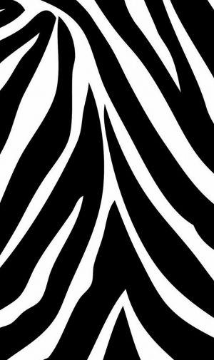 シマウマ ゼブラカラーのiphone壁紙 壁紙キングダム スマホ版 ゼブラ 壁紙 シマウマ