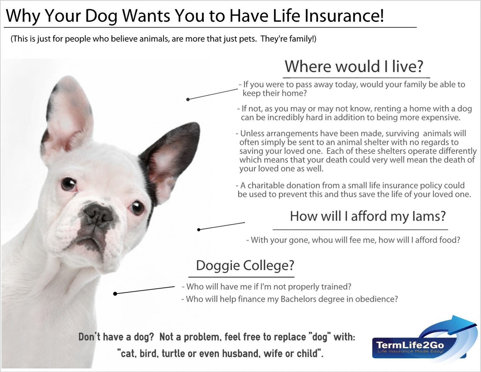 Why your dog wants you to get life insurance.