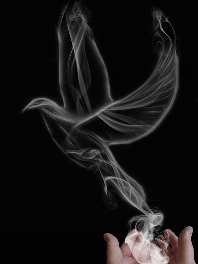 Smoke Bird By Jasconnor On Deviantart Bird My Pictures Smoke