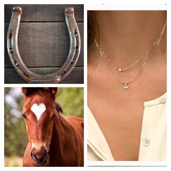 Horse Shoe Necklace Good Luck Gold Horse Shoe Necklace. Horse shoe says good luck on it, and the second layer has a Crystal. Jewelry Necklaces