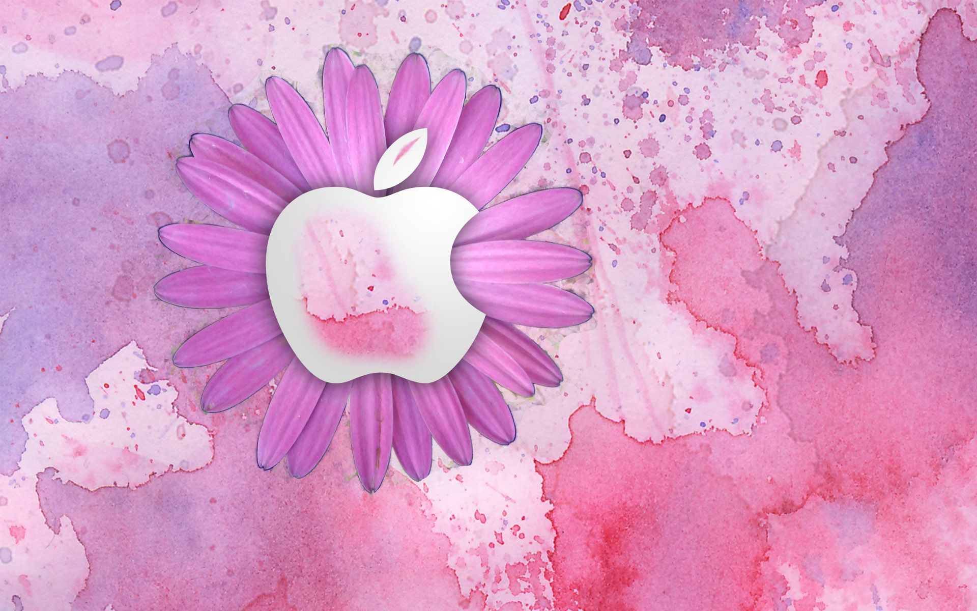 Girly Mac Desktop Backgrounds Images And Wallpapers All Free
