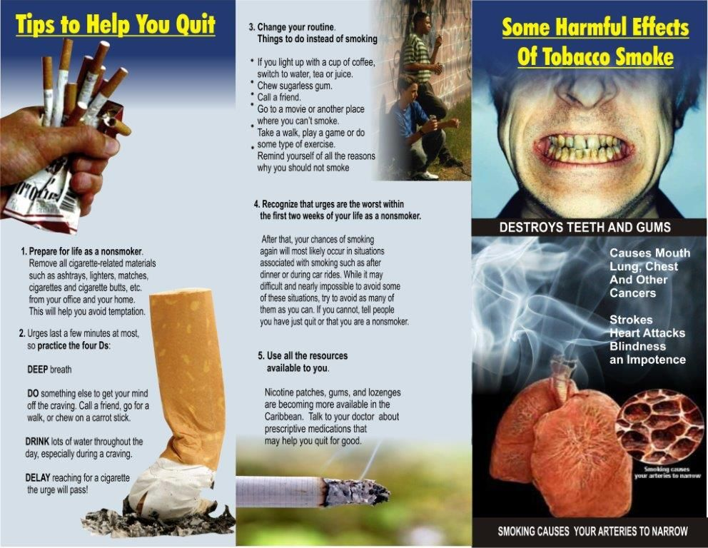 quit smoking pamphlet examples - google search | pamphlet project