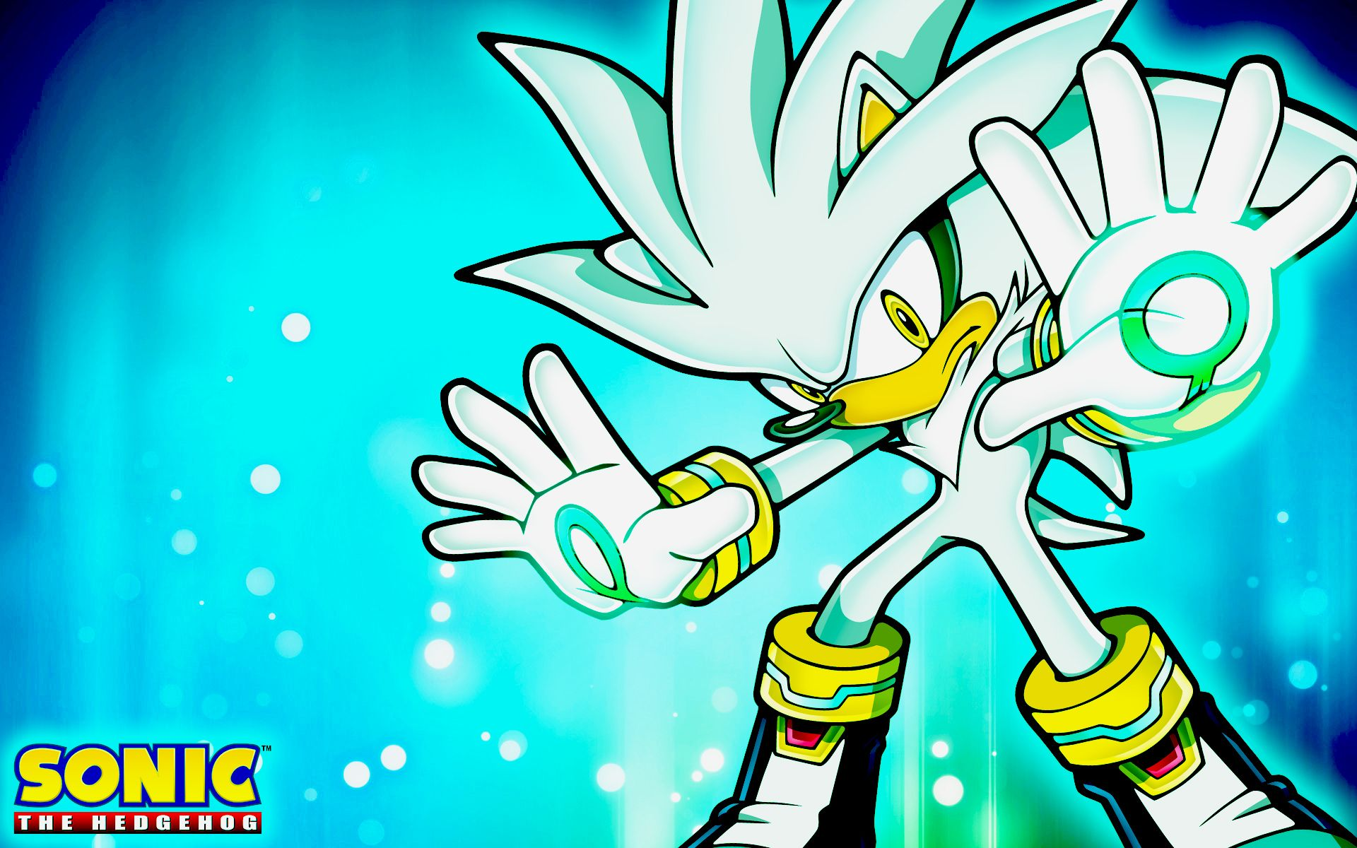 Dark Silver The Hedgehog