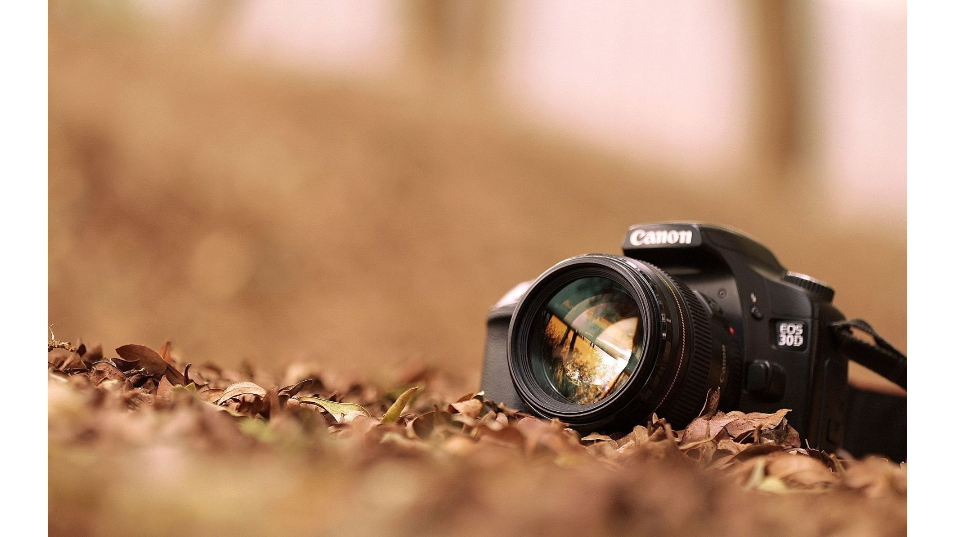 Best Tips And Tricks For Creative Photography Photography Wallpaper Camera Wallpaper Photography