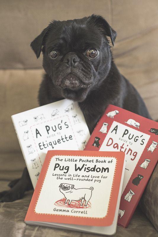 10 Must Own Books Starring Pugs Pugs Pugs Kisses Pug Love