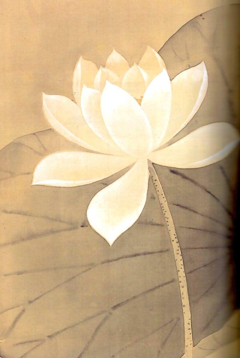 日本には酒井抱一とゆー男が居た すそ洗い 蓮の花の絵 蓮の花 蓮の絵