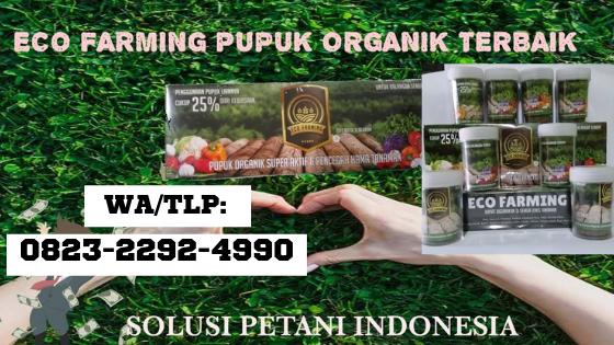 Hub 0823 2292 4990 Cara Menggunakan Pupuk Ecofarming Palabuhanratu Jual Pupuk Eco Farming Pupuk Organik Hidroponik Pupuk Kompos