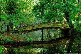 reflet du pont ...