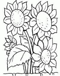 Resultado de imagen para dibujos de frutas para servilletas