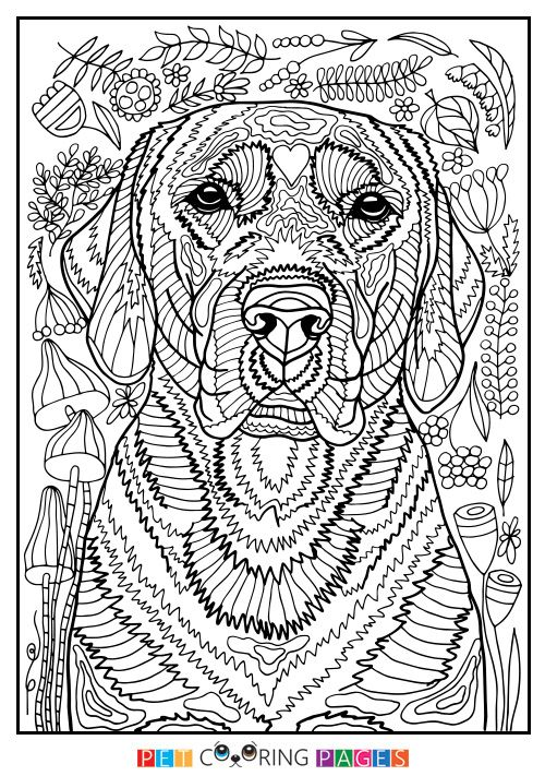 Free Printable Labrador Retriever Coloring Page Available For