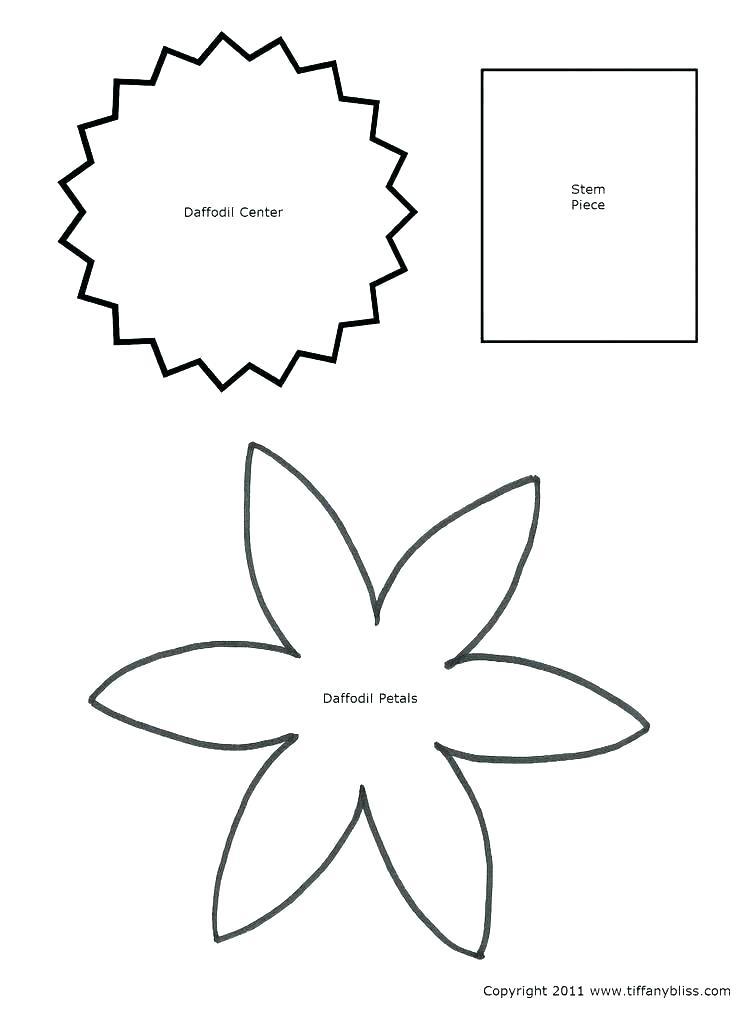 5 Petal Flower Template Free Printable Google Search Feltflowertemplate Beef Fajita Marin Flower Templates Printable Flower Template Flower Petal Template