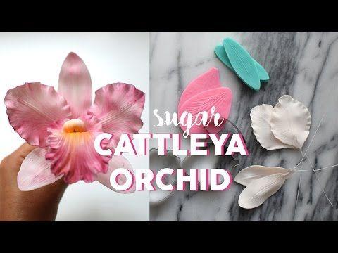 Zucker Orchideen Anleitung I Gumpaste Orchid Tutorial I Fondant I Tortendekoration Youtube Sugar Flowers Tutorial Flower Tutorial Cattleya Orchid