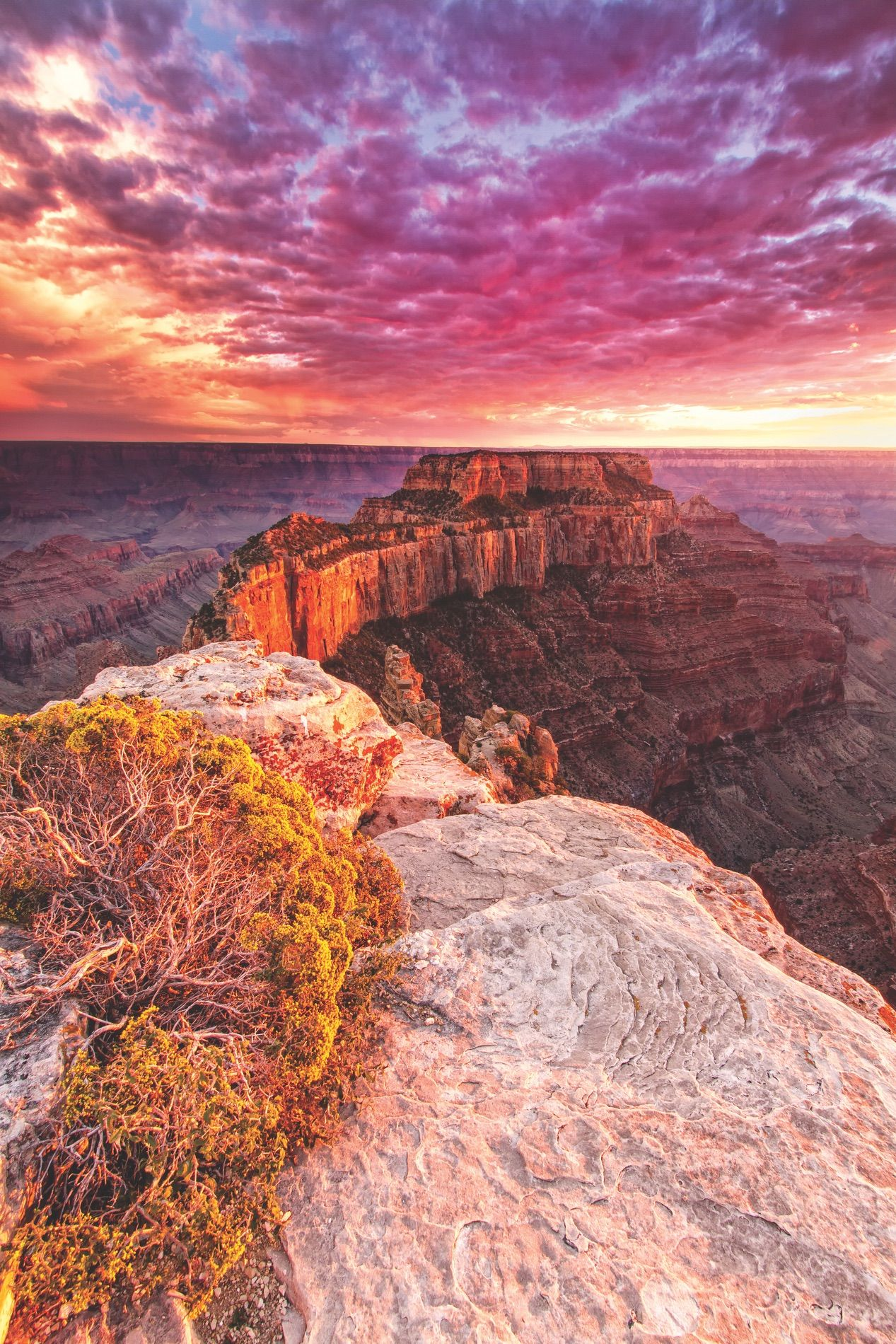 Beautiful Pictures Of The Grand Canyon