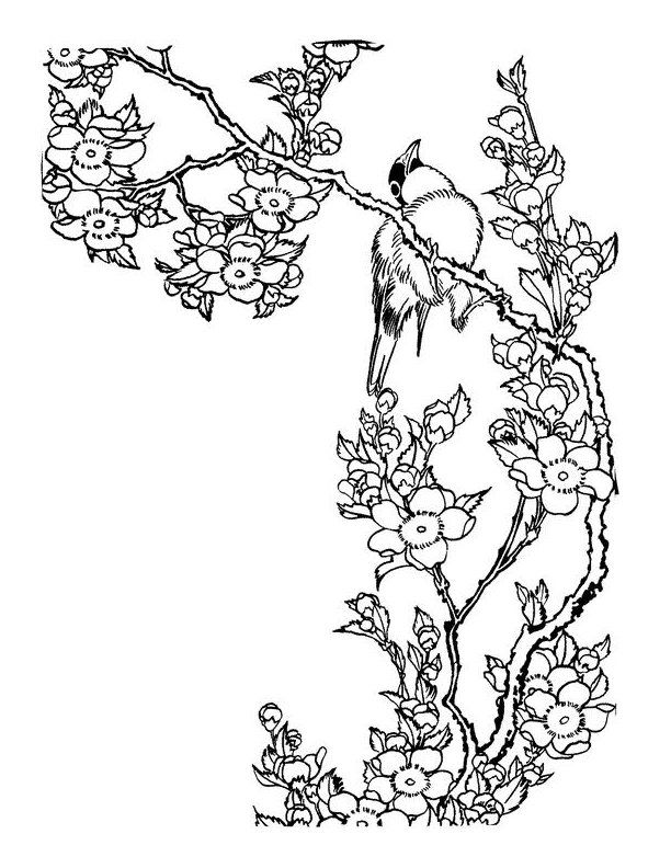 Japanese Coloring Pages Tree Coloring Page Flower Coloring