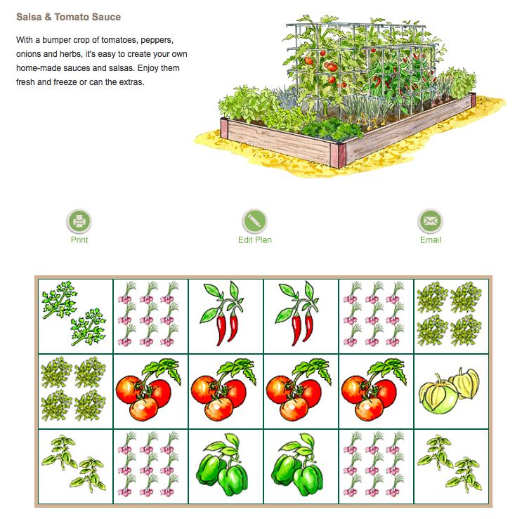 Salsa Garden Plan via gardeners.com | Garden: Edibles ...