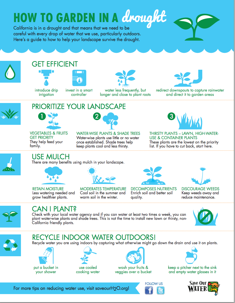 gardening in a drought infographic freeprintables