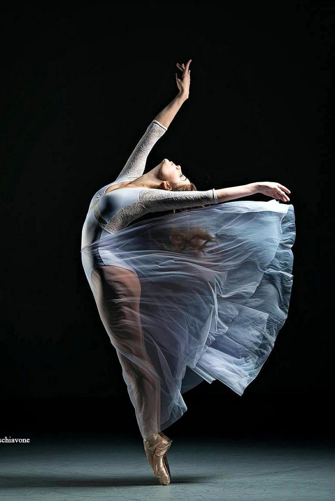 Pin By Eva Magdalena Bilek On Elegance Of Dancers Dance Poses Dancer Photography Dance Art